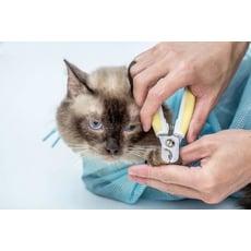 新款防抓咬貓袋 NF499多功能洗貓袋 貓洗澡袋/寵物防抓袋/貓奴必備防抓傷/寵物清潔用品/貓咪清
