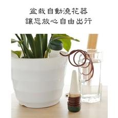 引水盆栽自動澆水器(兩入組)