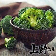 【上野物產】特選 新鮮乾淨綠花椰菜(1000g±10%/包)