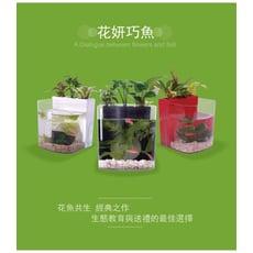 iEcofun花魚共生寵物缸-花妍巧魚 (花魚共生/魚缸/水族/花盆/花器/家飾/植物/寵物)