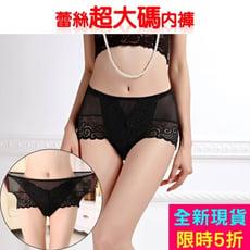 性感透明中高腰蕾絲超大碼女內褲