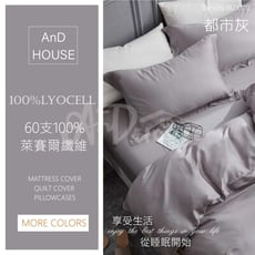 300織頂級天絲Lyocell-素色雙人加大床包6*6.2一入【都市灰】