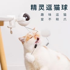 自動升降定時電動逗貓球貓玩具自嗨逗貓棒yoyo球玩具套裝貓咪用品