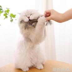 貓玩具貓薄荷棒棒糖貴為逗貓棒貓咪磨牙棒小奶貓啃咬幼貓的逗套裝