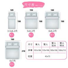 台灣製 3M防水防螨保潔墊(雙人)100%防水床包 3M吸濕排汗專利 床單 床包組