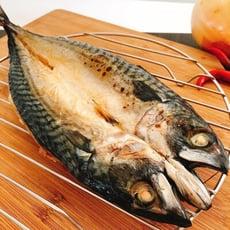 超肥厚整尾挪威薄鹽鯖魚