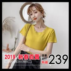 2019新春首賣 韓版新款針織純棉木耳邊坑條純色短袖T恤 高CP值高彈性波浪邊(8色可選/M-L)