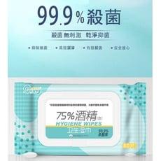【現貨】75%酒精濕紙巾80抽隨身包 滅菌率99.9% 除菌家用抑菌便携纸巾