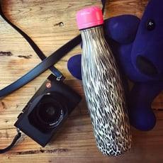 韓國BEDDYBEAR 杯具熊 2016新款 藝術曲線保溫瓶 304不鏽鋼保溫杯