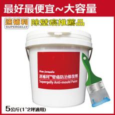 【速補利】壁癌防霉防水抓漏專業修復劑 5公斤