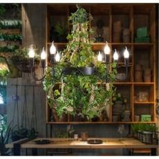 紫蘭軒*免運麻繩復古工業風 植物吊燈110v-220v通用創意個性火鍋店餐廳咖啡廳酒吧