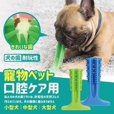 【全館批發價-免運】護齒潔牙棒(小型犬) 寵物潔牙 磨牙 清潔牙齒 寵物玩具 寵物用品護齒(出清)