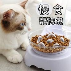 寵物慢食碗減肥碗-單碗 寵物碗 慢食碗 減肥碗 狗碗 貓碗