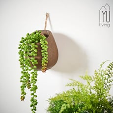 【YU Living】仿真垂掛式多肉植物裝飾/人造盆栽(綠色)
