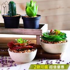 【YU Living】仿真迷你多肉植物裝飾/人造盆栽(2色)