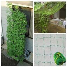 戶外園藝耐磨尼龍網/植物支持網/攀援植物網/專業種植藤蔓植物(1.8x0.9米)
