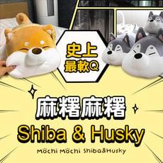 麻糬麻糬Shiba/Husky-S(小隻)情人節/送禮/限量韓國獨家授權正版/Lazyworker