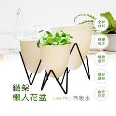【博士韋爾BOSSWELL】鐵架蛋形 自動吸水 棉繩吸水 植栽  懶人盆栽 (三尺寸一組)(PD)