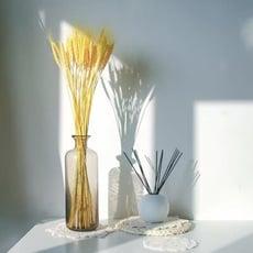 晞·乾燥彩色麥穗 DIY乾燥花材