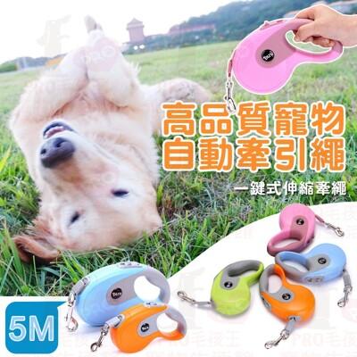RPO毛孩王 高品質寵物自動牽引繩5M 伸縮牽 繩寵物用品 伸縮拉帶胸背帶 伸縮拉繩 溜狗繩