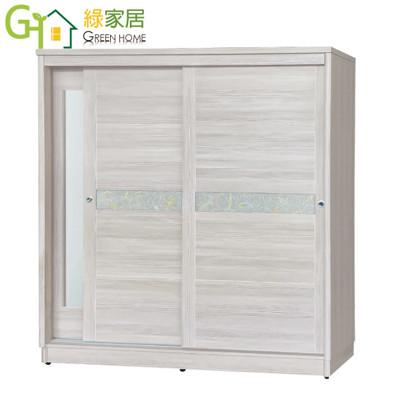 【綠家居】伊雷 時尚6.1尺推門衣櫃/收納櫃(三色可選+單抽屜+穿衣鏡)