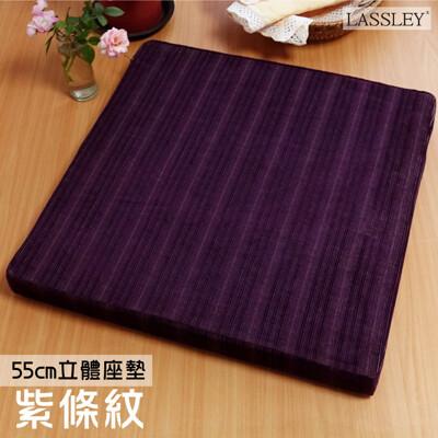 【LASSLEY】立體座墊-紫條紋55cm高6cm厚墊(台灣製造)