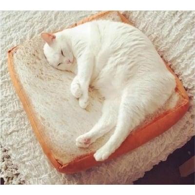 【海綿吐司坐墊CH】仿真吐司坐墊麵仿真吐司座墊 仿真 土司 抱枕 禮物 寵物 貓咪 狗 椅墊 聖誕節