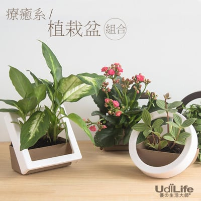 【UdiLife】辦公室療癒紓壓系植栽盆 (方型/圓型) ★