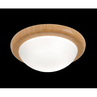 淺色木紋烤漆陽台小吸頂燈